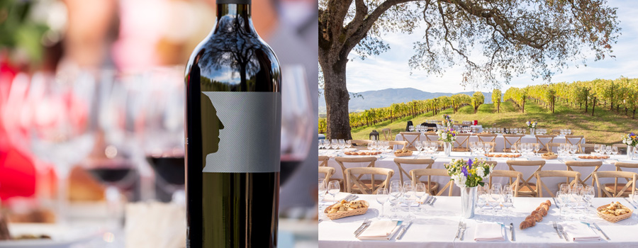 Profile bottle, table setting in vineyard
